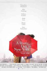 دانلود زیرنویس فیلم A Rainy Day in New York 2019
