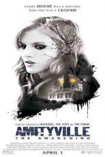دانلود زیرنویس فیلم Amityville: The Awakening 2017
