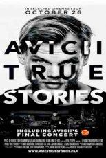 دانلود زیرنویس فیلم Avicii: True Stories 2017