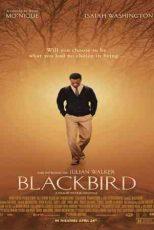 دانلود زیرنویس فیلم Blackbird 2014