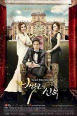 دانلود زیرنویس فیلم Bride of the Century 2014