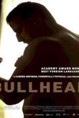 دانلود زیرنویس فیلم Bullhead 2011