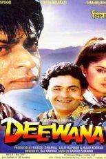 دانلود زیرنویس فیلم Deewana 1992
