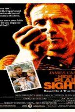 دانلود زیرنویس فیلم Hide in Plain Sight 1980