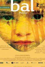 دانلود زیرنویس فیلم Honey 2010