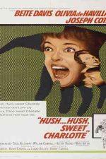 دانلود زیرنویس فیلم Hush…Hush, Sweet Charlotte 1964