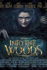 دانلود زیرنویس فیلم Into the Woods 2014