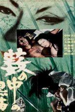 دانلود زیرنویس فیلم Kuroneko 1968