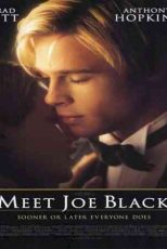 دانلود زیرنویس فیلم Meet Joe Black 1998