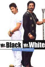 دانلود زیرنویس فیلم Mr. Black Mr. White 2008