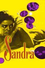 دانلود زیرنویس فیلم Sandra 1965