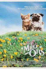 دانلود زیرنویس فیلم The Adventures of Milo and Otis 1986