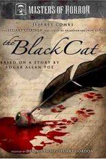 دانلود زیرنویس فیلم The Black Cat 2007