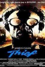 دانلود زیرنویس فیلم Thief 1981