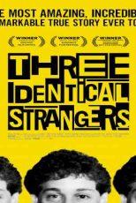دانلود زیرنویس فیلم Three Identical Strangers 2018