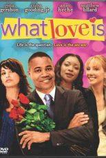دانلود زیرنویس فیلم What Love Is 2007