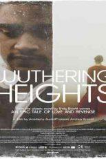 دانلود زیرنویس فیلم Wuthering Heights 2011